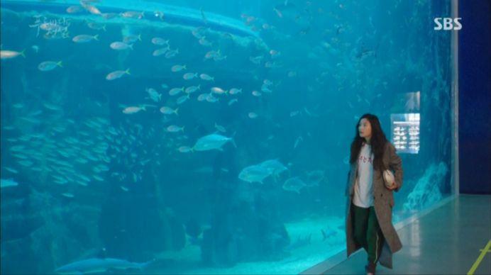 何か月ぶりに水の中に入った人魚は幸せです~~~