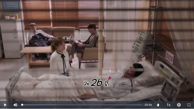 怪しいパートナー26話の英語字幕入り動画