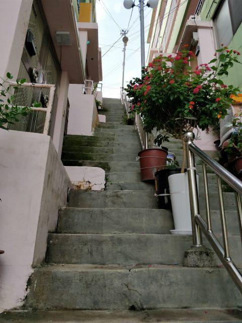 もう少し階段を登ってみました