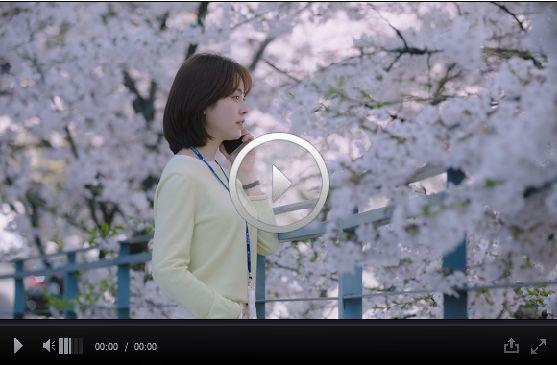 「春の夜」11話 12話
