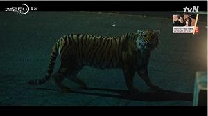 うっかりして漂う虎の魂を癒す必要がある任務遂行まですることになったク・チャンソン